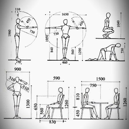 La antropometr a en el dise o de muebles mi carpinteria for Arquitectura ergonomica